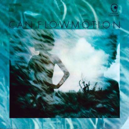 "Can ""Flow Motion"""